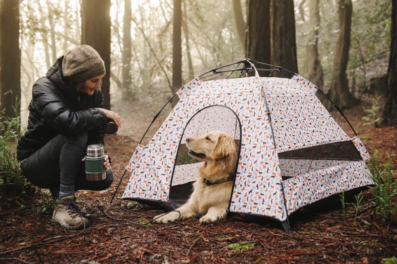 18 Best Dog Tents and Pop Up Pet Tents