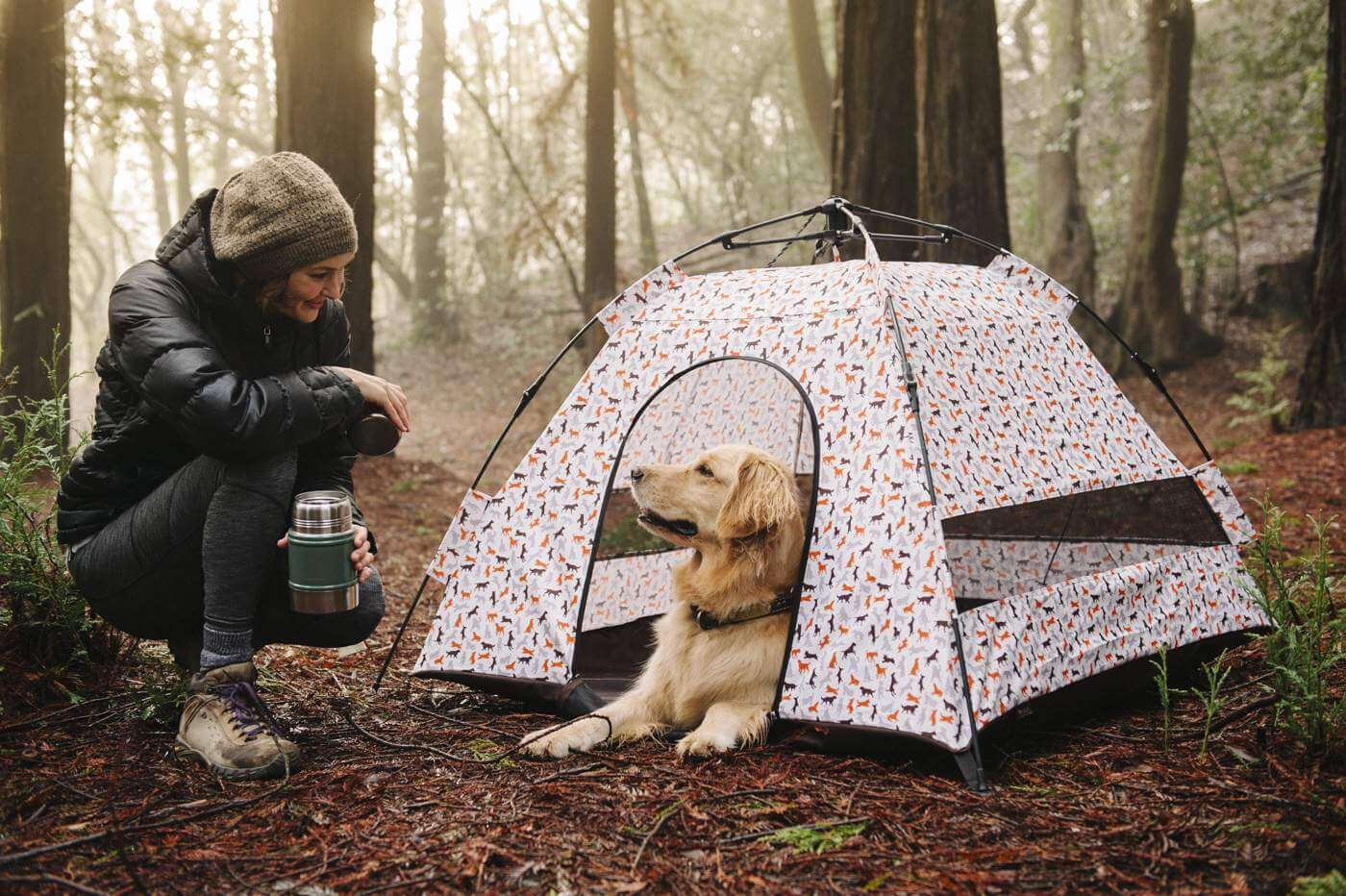Dog Tent Featured Image