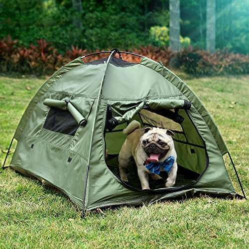 Small pup pop up tent