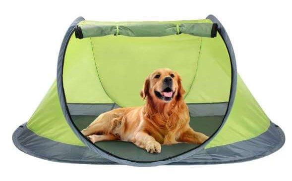 Winterial Outdoor Pop Up Pet Tent