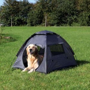 what is a dog tent