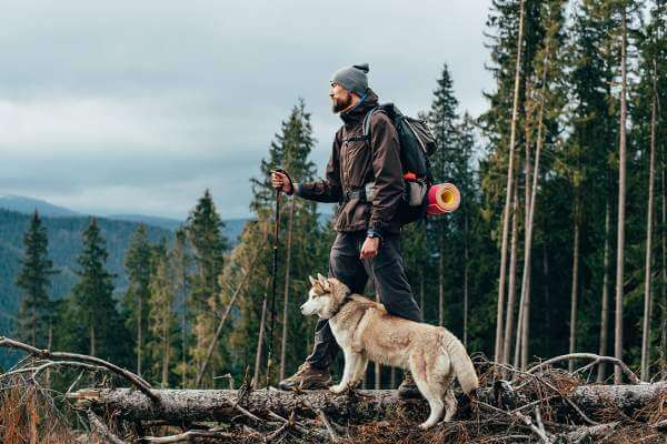 memorable moment with hiker and dog