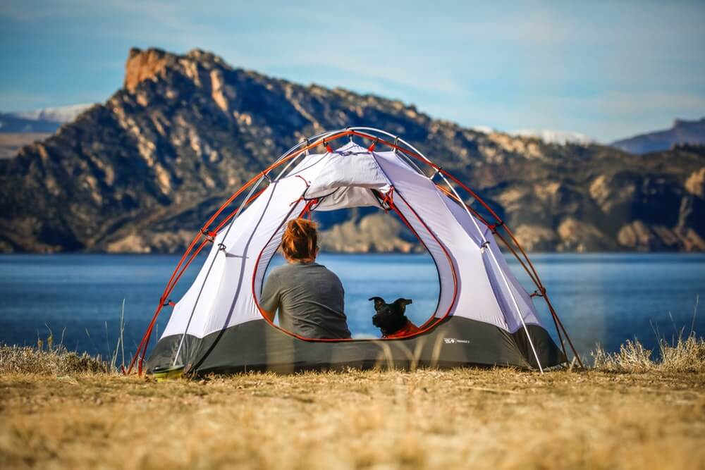 tents for dog owners featured