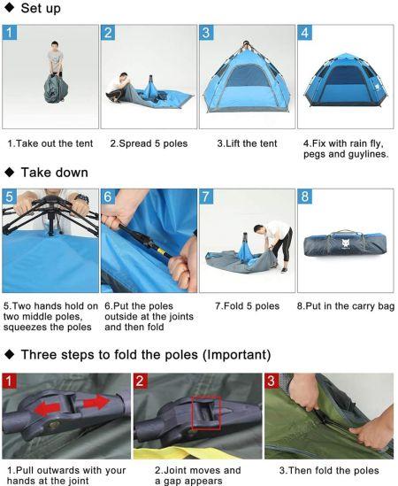 night cat tent setup instructions