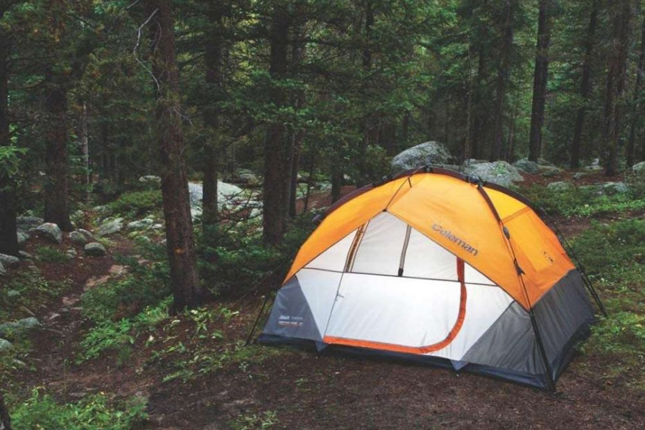 coleman signature tent in the woods