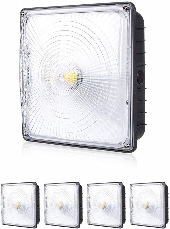 Parmida LED Canopy Light