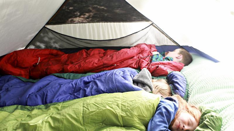 3 campers asleep in sleeping bags inside a tent